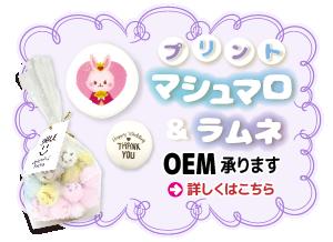 oem-icon-02